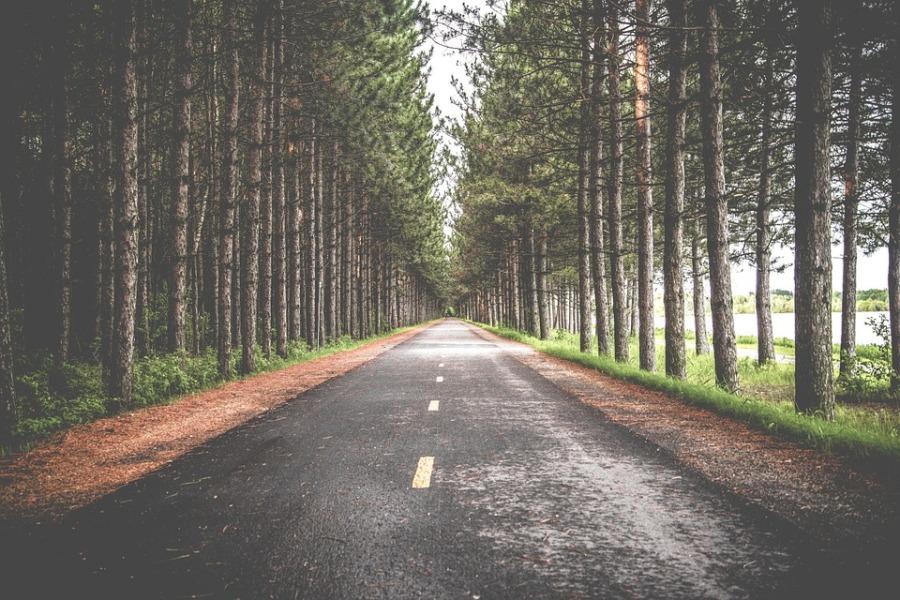road-690138_960_720-1