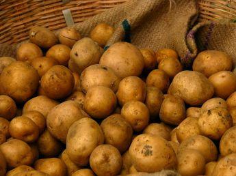 800px-India_-_Koyambedu_Market_-_Potatoes_01_(3987050638)