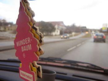 800px-Wunderbaum