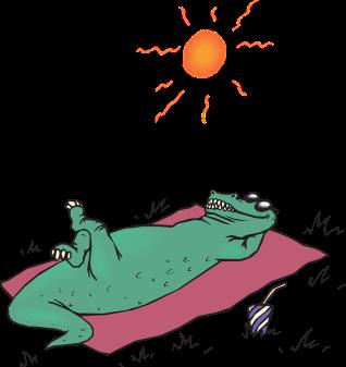 alligator-44595_960_720