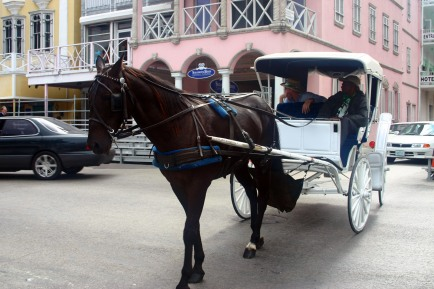 Horse_and_carriage,_Nassau.jpg